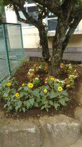 よるべ花壇